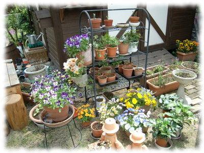 Deck_flower080430