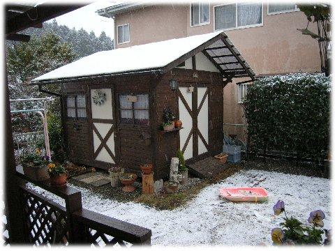 2008年初雪
