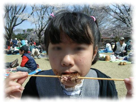 Hanami0804052